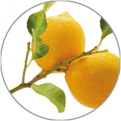 Medisana citrinų eterinis aliejus Lemon, 10 ml 2