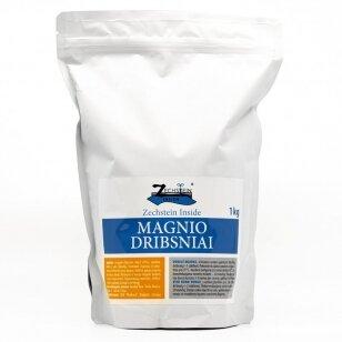 Zechstein Inside Magnio Dribsniai, 1kg